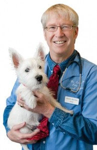 Dr. Marty Becker offers pet care tips to keep your dog healthy and happy.