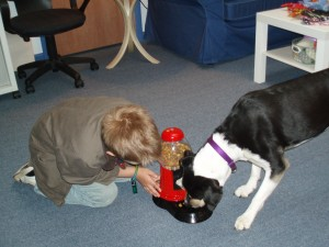 Pet play therapy: Kirrie helps with the doggie gumball machine