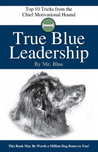 Leadership Skills and Workplace Motivation Taught by Mr. Blue, Chief Motivational Hound
