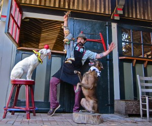 Circus tricks for dogs with Francis Metcalf