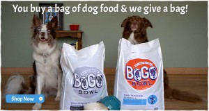 BOGO Bowl pet food